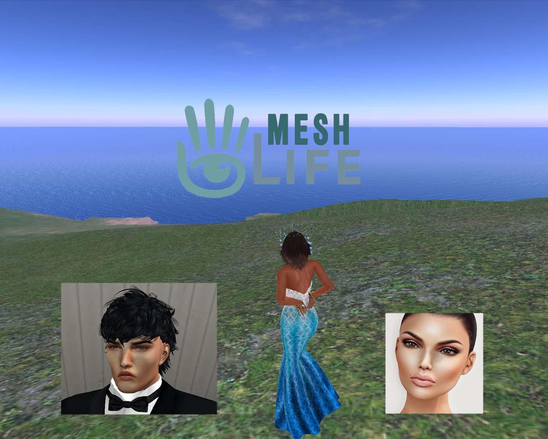 mesh avatar_001 copy